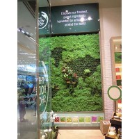 ans living wall at Body Shop
