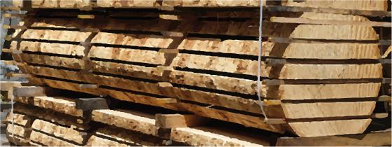 Greenspec Glossary Of Timber Terminology