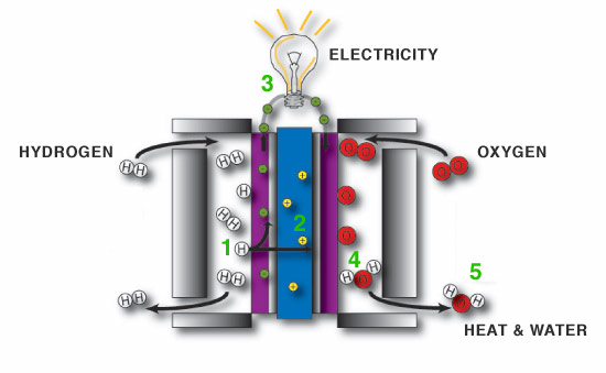How a fuel cell works